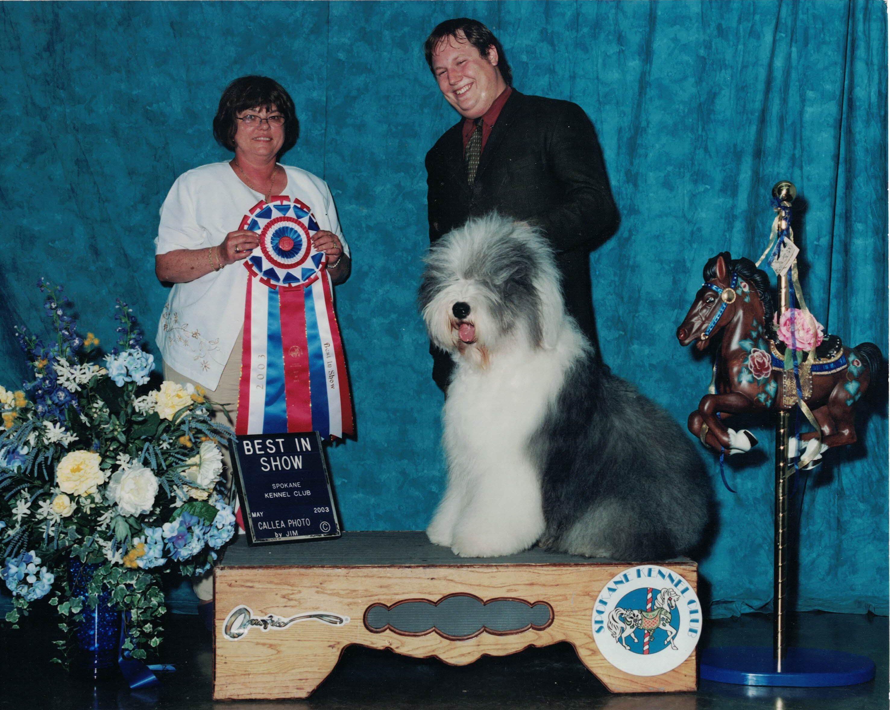 Conformation Class – Great Salt Lake Dog Training Club