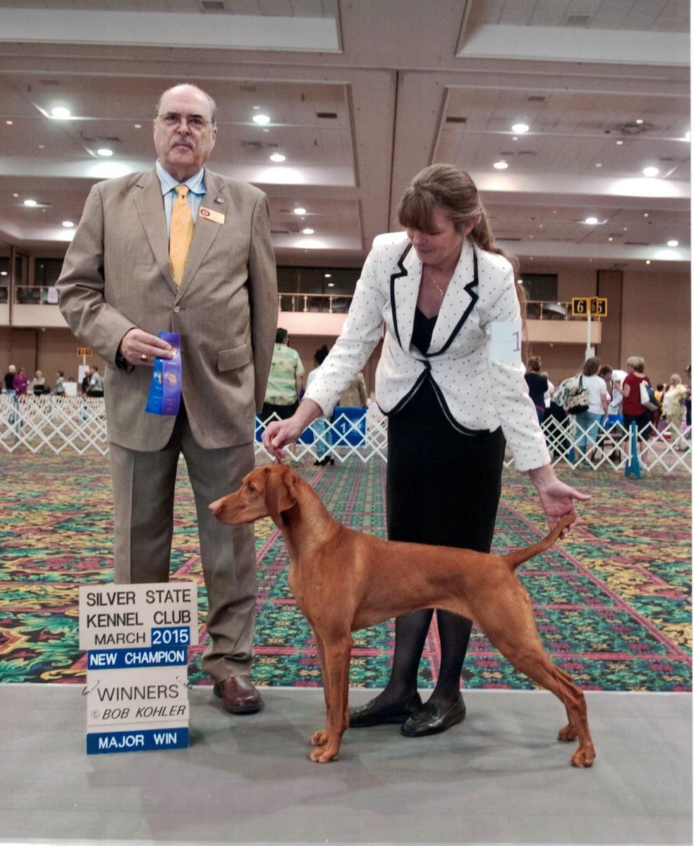 Dog Conformation Training Classes